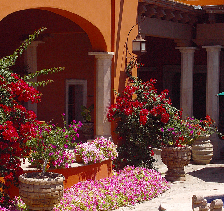 colores-para-patios-art1-1